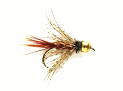 Bild von TUNGSTEN NYMPHEN SOFT HACKLE PHEASANT TAIL