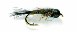 Picture of TUNGSTEN NYMPHEN WOVEN NYMPH BROWN OLIVE