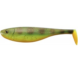 Image de IRON CLAW SLAB SHAD HP