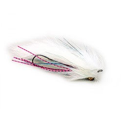 Image de STREAMER TROUT INTRUDER WHITE