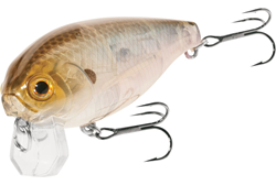 Bild von LUCKY CRAFT MOONSAULT CB-001 GHOST MINNOW