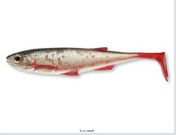 Picture of DAIWA DUCKFIN LIVESHAD LIVE ROACH