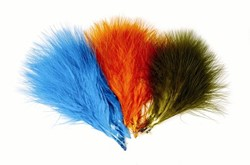 Image de VENIARD TURKEY MARABOU
